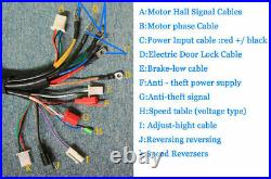 Electric Bicycle Brushless Motor Speed Controller For E-bike & Scooter 48V 5000W